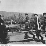 Ewakuacja rannego. (fot. za NAC)